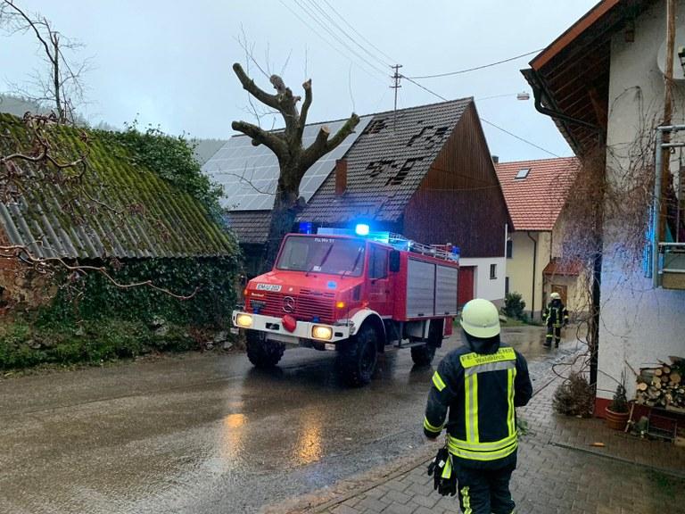 10.02.2020 Sturmschaden Siensbach 3