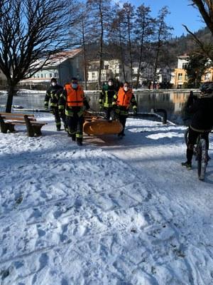 14.02.2021 Stadtrainsee, Schwan 2
