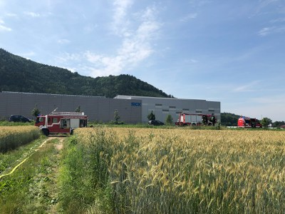 16.06.2018 Flächenbrand Buchholz 2
