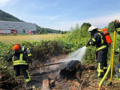 16.06.2018 Flächenbrand Buchholz