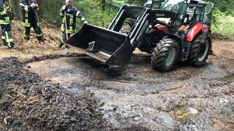 29.09.2019 Reisigfeuer/Flächenbrand Kandelwald 1