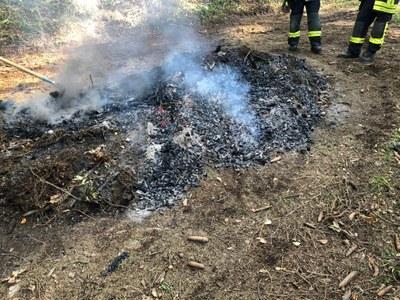 29.09.2019 Reisigfeuer/Flächenbrand Kandelwald 2