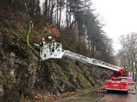 Baumbruch zwischen Suggental und Waldkirch