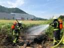 Flächenbrand neben L186, kurz vor Buchholz