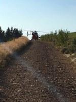 Unfall bei Waldarbeiten