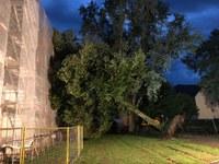 Unwetterschäden in Waldkirch
