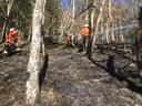 Vegetationsbrand bei Simonswald
