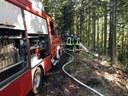 Vegetationsbrand, Brandmeldeanlage und brennende Terrassendielen